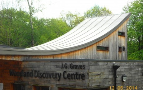 Curved & Lead Roll Effect Roof, J.G Graves Woodland Discovery Centre