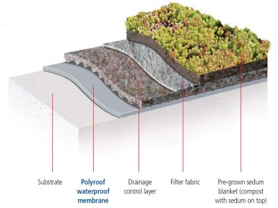 Natural Green Roofs From Tuff Roofing