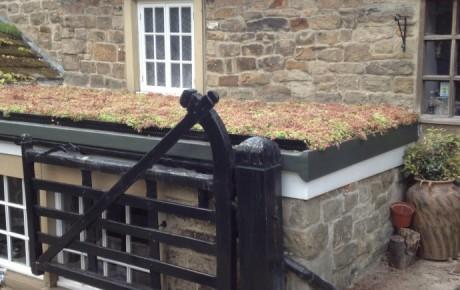 Green Roof Baslow